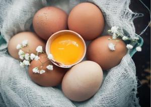 mơ thấy trứng gà đánh đề con gì
